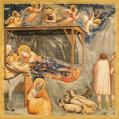 Nascita di Gesu - Giotto